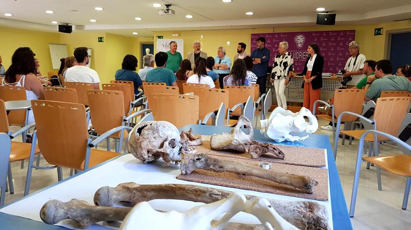 Osteología arqueológica y forense: teoría y práctica