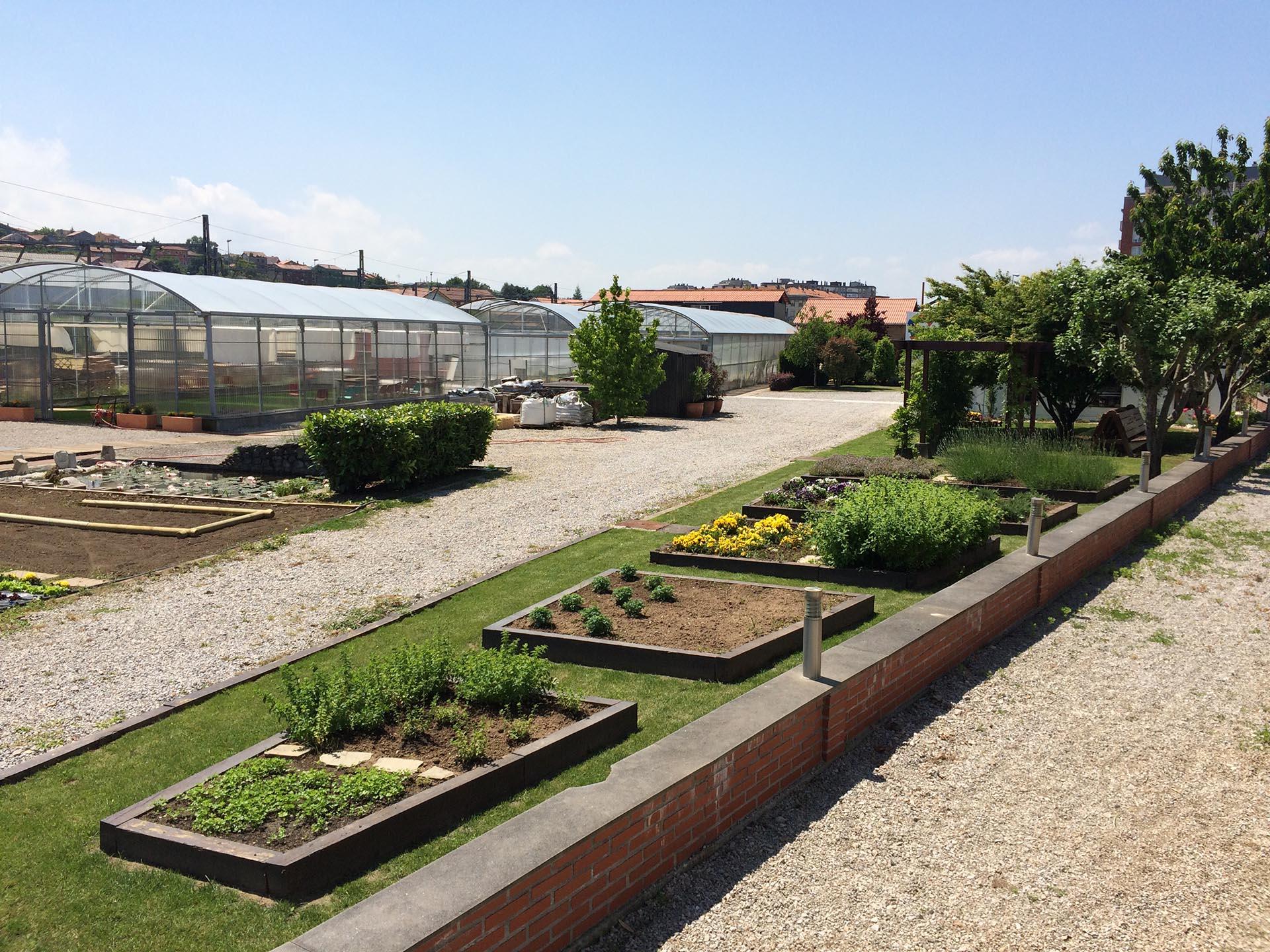Horticultura ecológica en jardineras y contenedores
