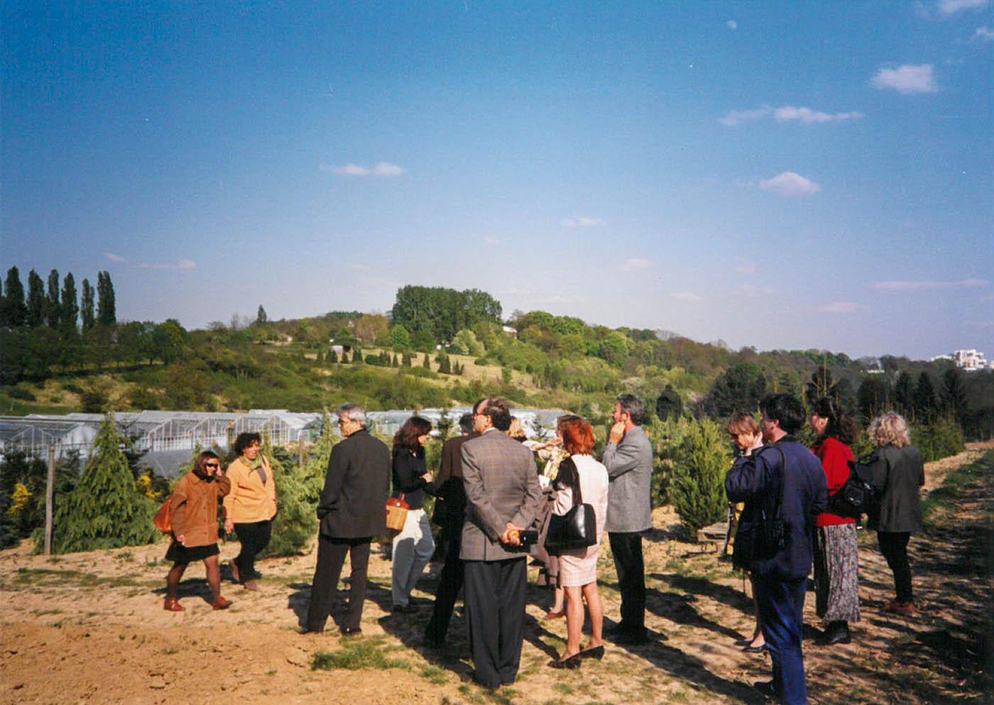 Proyectos Europeos: Now II