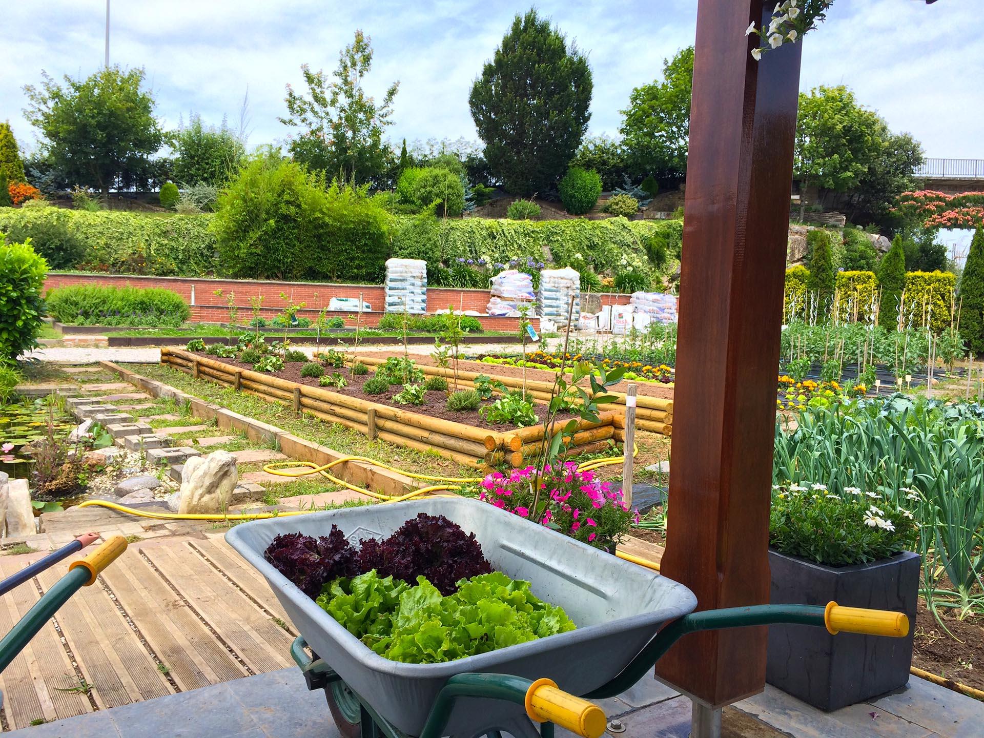 Horticultura Urbana