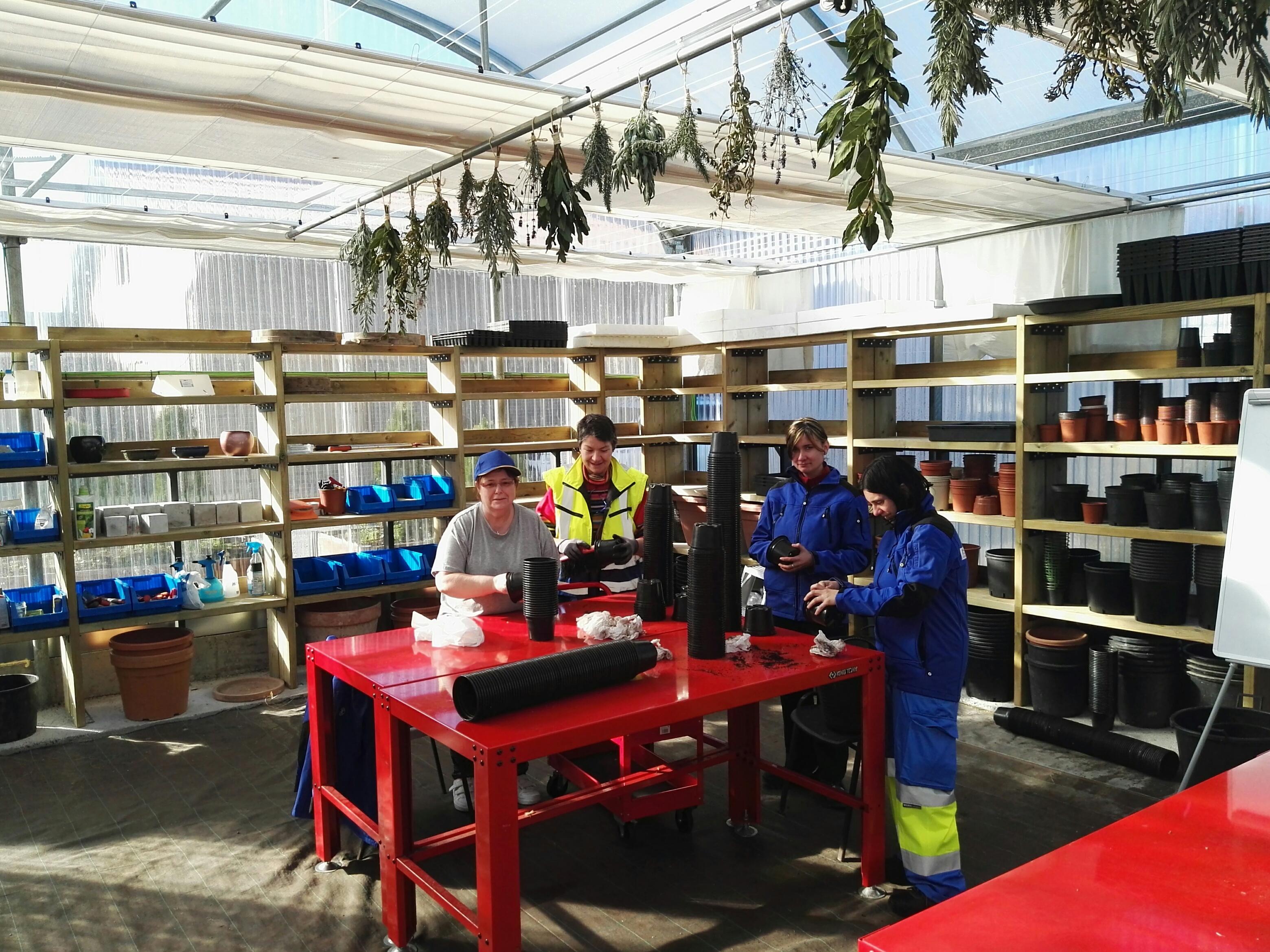 Instalación y mantenimiento de jardines y zonas verdes